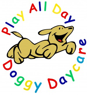 Play All Day Dog Care