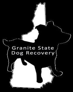 GSDR logo
